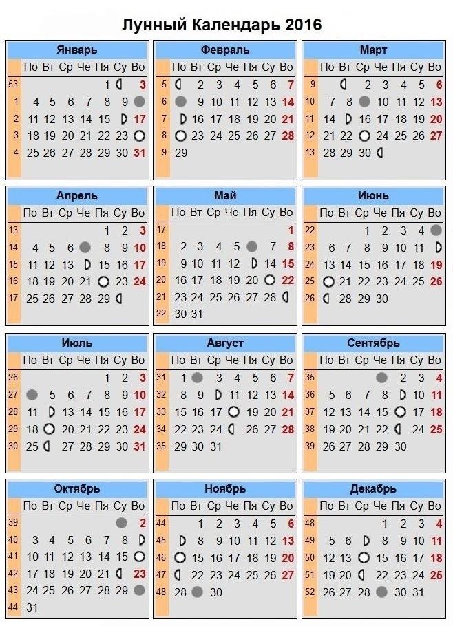Календарь игр чемпионата россии 2016 год